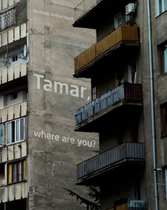 __Tamar-Front-Cover
